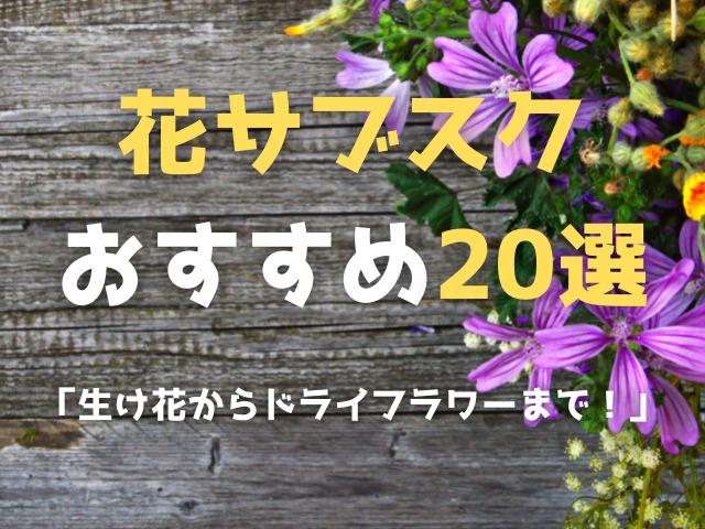 花サブスクおすすめ20選!生け花からドライフラワーまで!